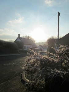 20 Jan, frosty morning, Dunsford, Dartmoor.